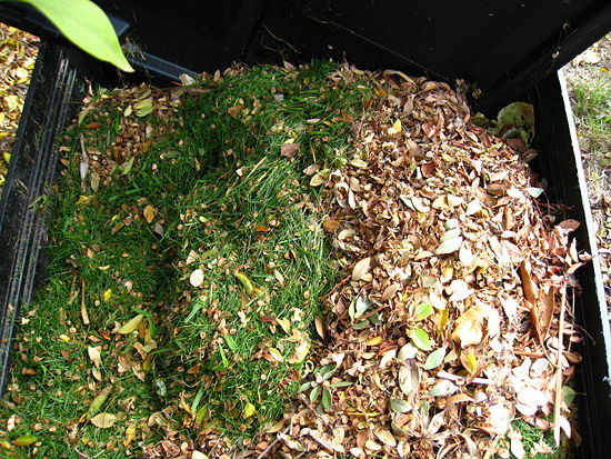 green-brown compost
