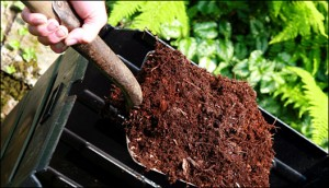 guide-to-composting-at-home