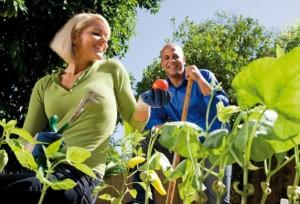 2012-06-07-gardening-602x410