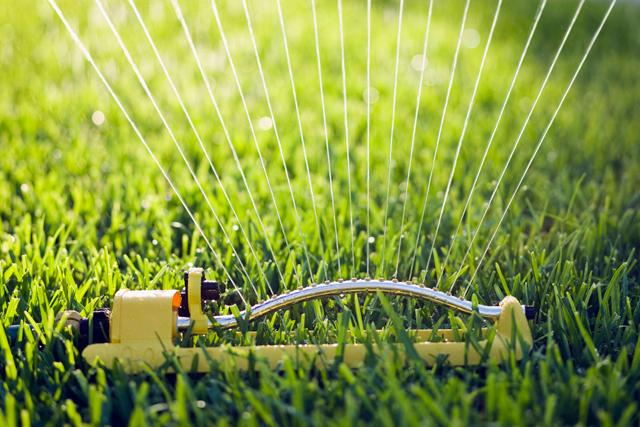prepare your lawn for fall